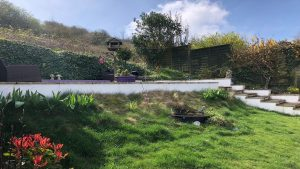 Saltdean garden before makeover