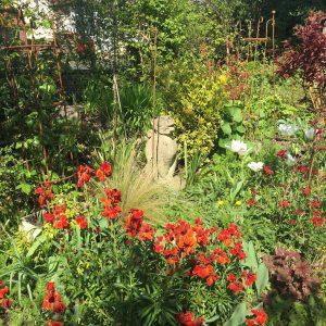 Garden design, planting schemes